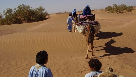 Morocco-family-holiday-camel-trek
