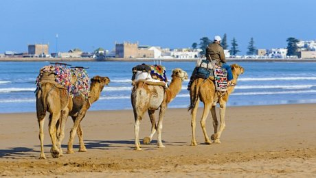 Morocco-Atlantic-Coast-tours-Essaouira-beach