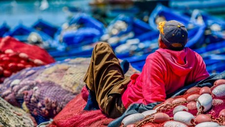 Morocco-Essaouira-tours-Fisherman
