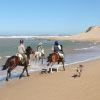 Horse riding in Morocco