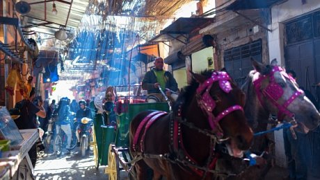 Marrakech-Souks-caleche-souks-surf-and-trek-tourrs