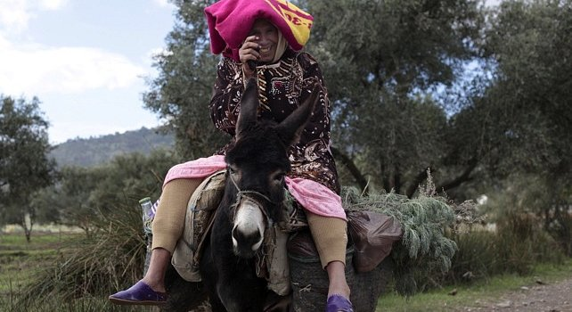 Northern Morocco Tours - Rif mountains and donkey