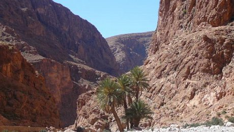 Morocco-rock-climbing-tours-Todra Gorge